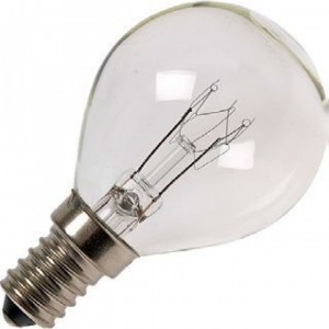 Philips small 40W clear light bulb E14