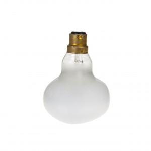 60W B22 incandescent for the 'Spider' lamp