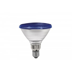 Spot light PAR38 with blue glass 80W