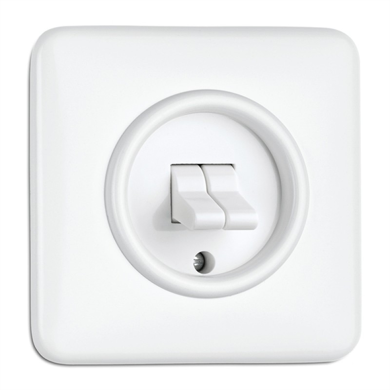Duroplast double toggle switch